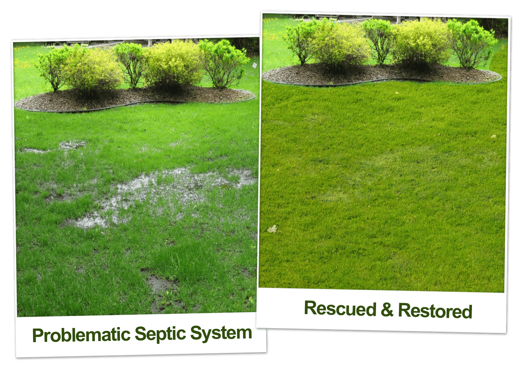 before and after septic tank maintenance